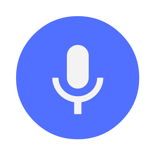 More than 30 million 'voice first' devices in US homes by year end