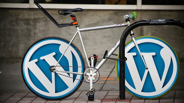 3 Reasons Why Big Brands are Switching to WordPress1
